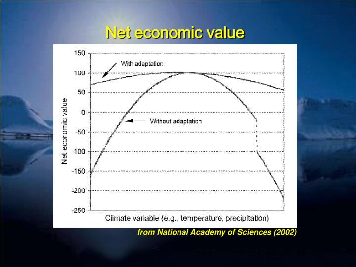 Net economic value