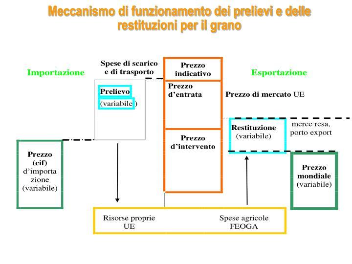 Meccanismo di funzionamento dei prelievi e delle restituzioni per il grano
