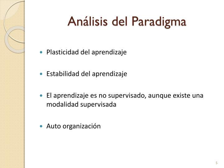 Análisis del Paradigma
