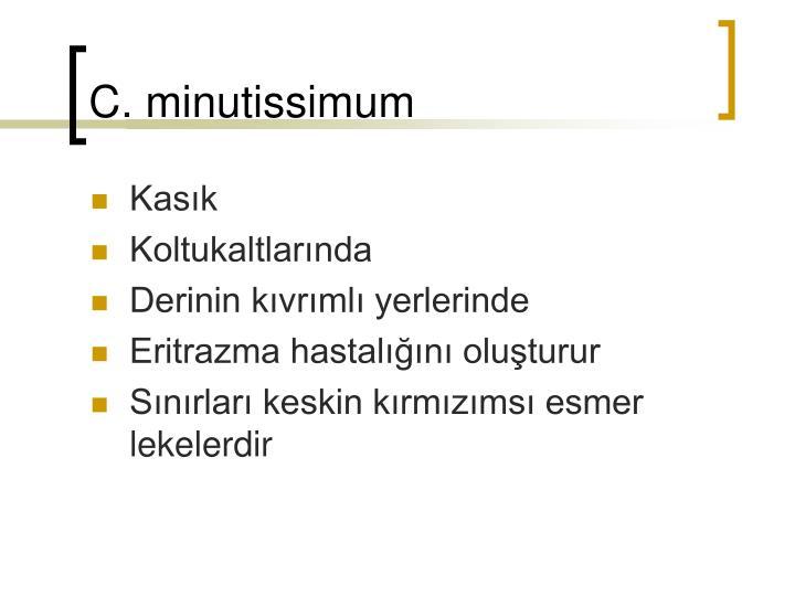 C. minutissimum