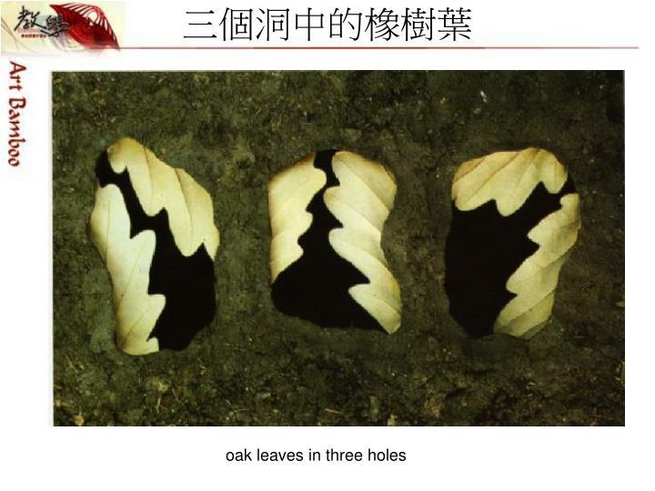 三個洞中的橡樹葉