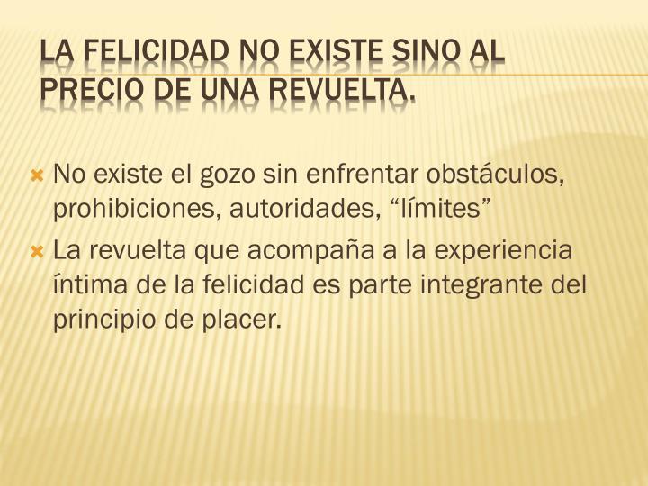 """No existe el gozo sin enfrentar obstáculos, prohibiciones, autoridades, """"límites"""""""