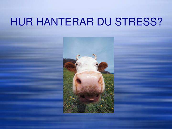 HUR HANTERAR DU STRESS?