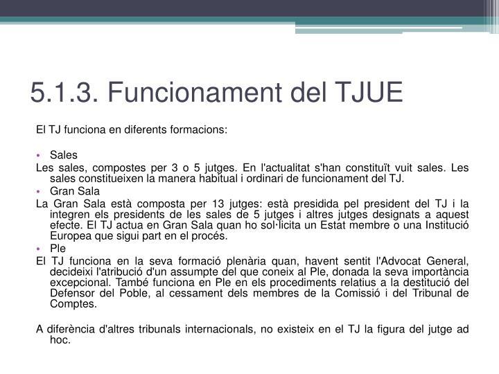 5.1.3. Funcionament del TJUE