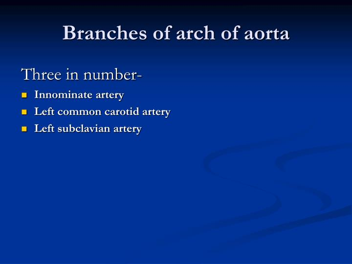 Branches of arch of aorta