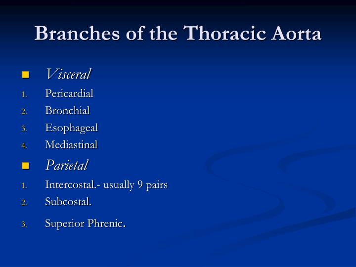 Branches of the Thoracic Aorta