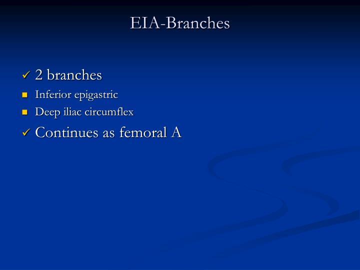 EIA-Branches