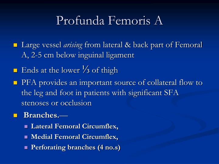 Profunda Femoris A