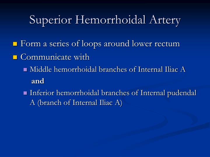 Superior Hemorrhoidal Artery