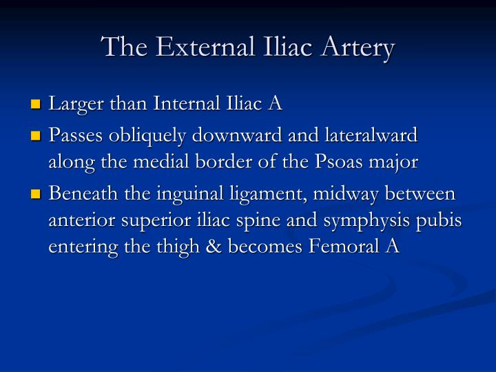The External Iliac Artery