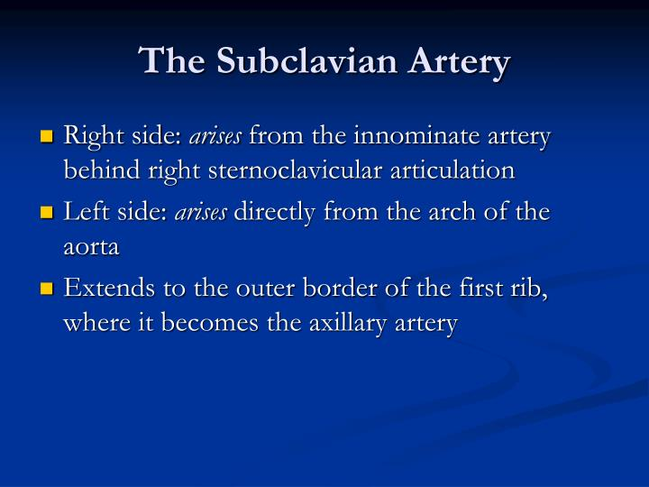 The Subclavian Artery