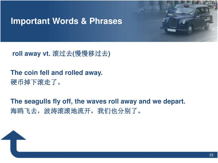 Important Words & Phrases