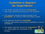 guidelines to segment the target market