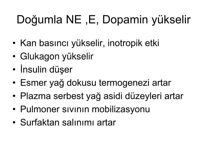 Doğumla NE ,E, Dopamin yükselir