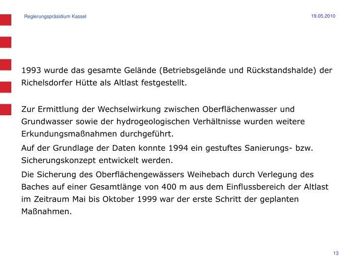 1993 wurde das gesamte Gelände (Betriebsgelände und Rückstandshalde) der Richelsdorfer Hütte als Altlast festgestellt.