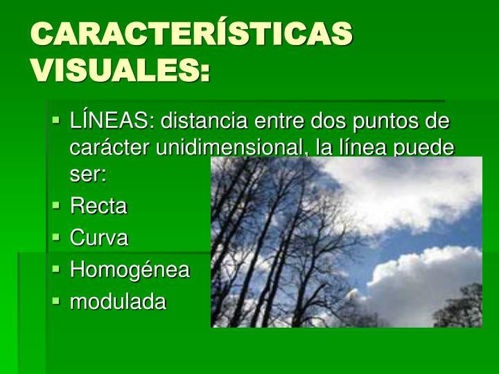 CARACTERÍSTICAS VISUALES: