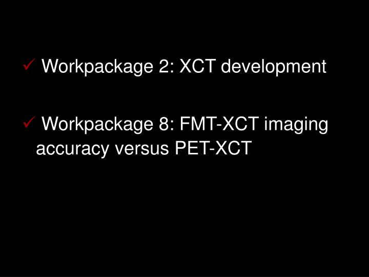 Workpackage 2: XCT development