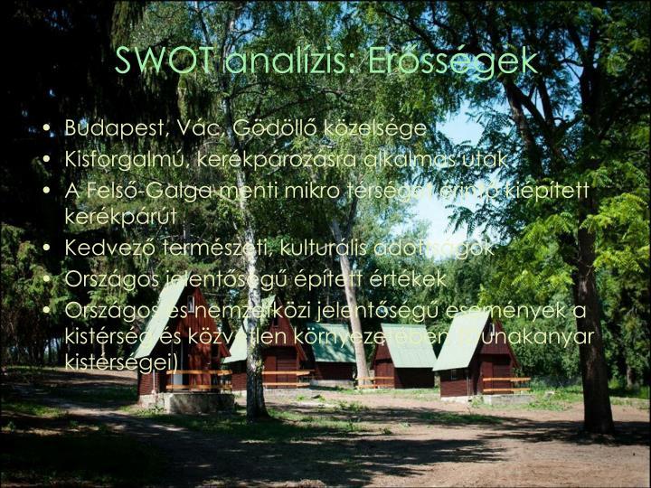 SWOT analízis: Erősségek