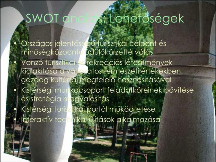 SWOT analízis: Lehetőségek