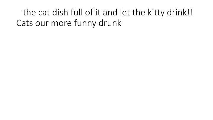 the cat dish full of it and let the kitty drink!! Cats our more funny drunk