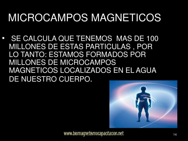 MICROCAMPOS MAGNETICOS