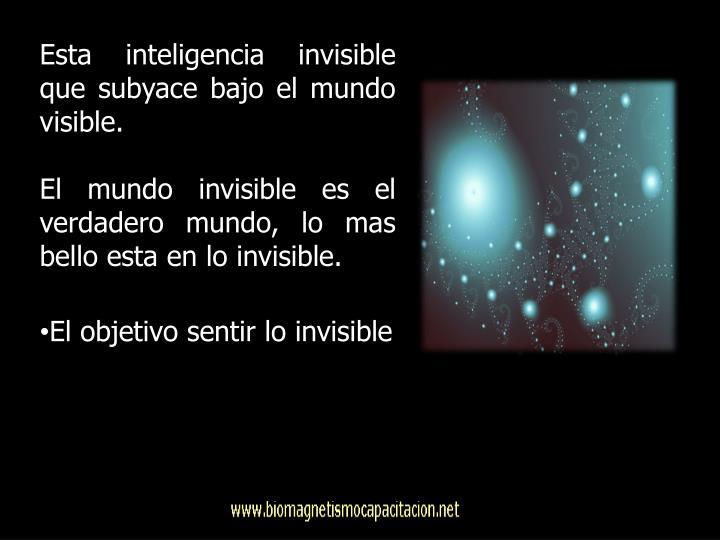 Esta inteligencia invisible que subyace bajo el mundo visible.