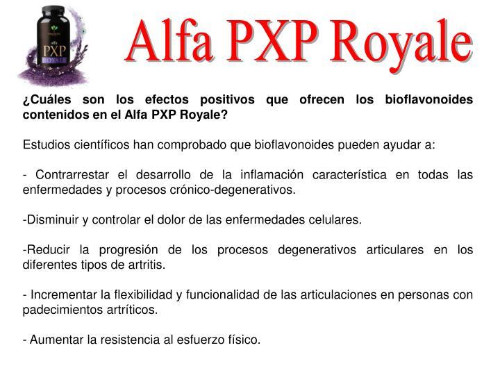 Alfa PXP Royale