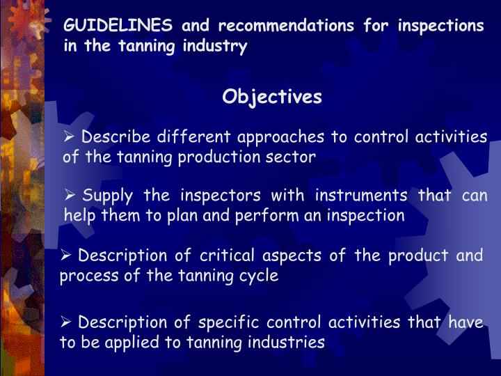 GUIDELINES and recommendations for inspections in the tanning industry