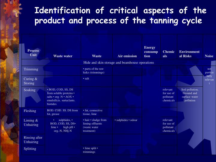 Identification of critical aspects of the product and process of the tanning cycle