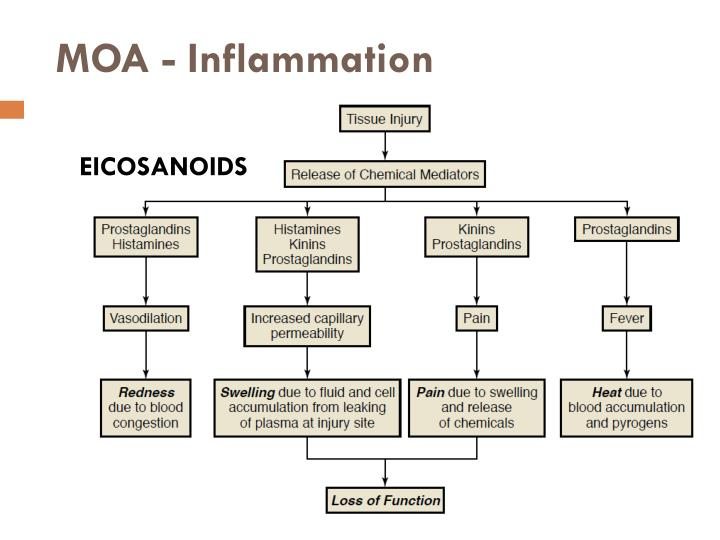 MOA - Inflammation