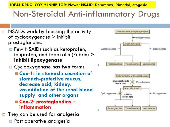 IDEAL DRUG: COX 2 INHIBITOR: Newer NSAID: Deramaxx, Rimadyl, etogesic