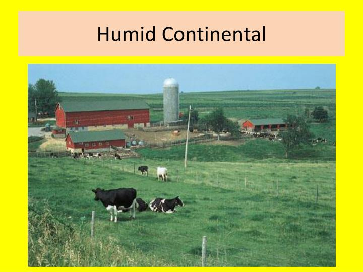 Humid Continental