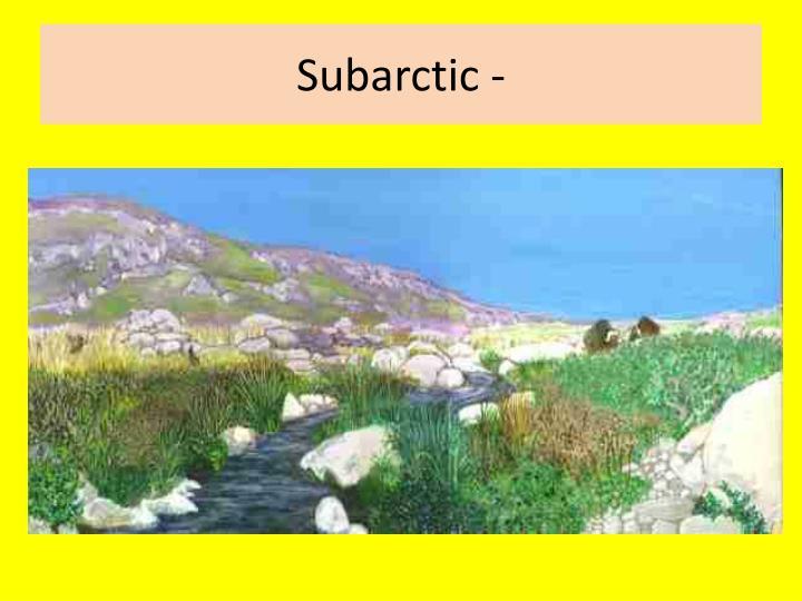 Subarctic -