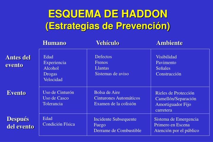 ESQUEMA DE HADDON