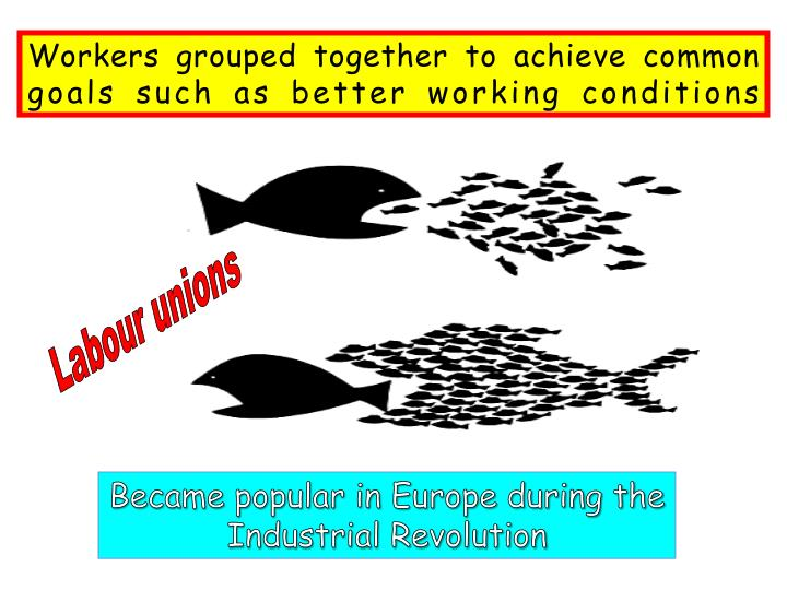 Workers grouped together to achieve common goals such as better working conditions