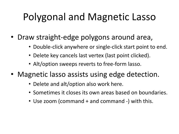 Polygonal and Magnetic Lasso