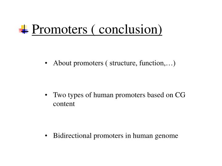 Promoters ( conclusion)
