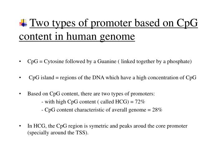 Two types of promoter based on CpG content in human genome
