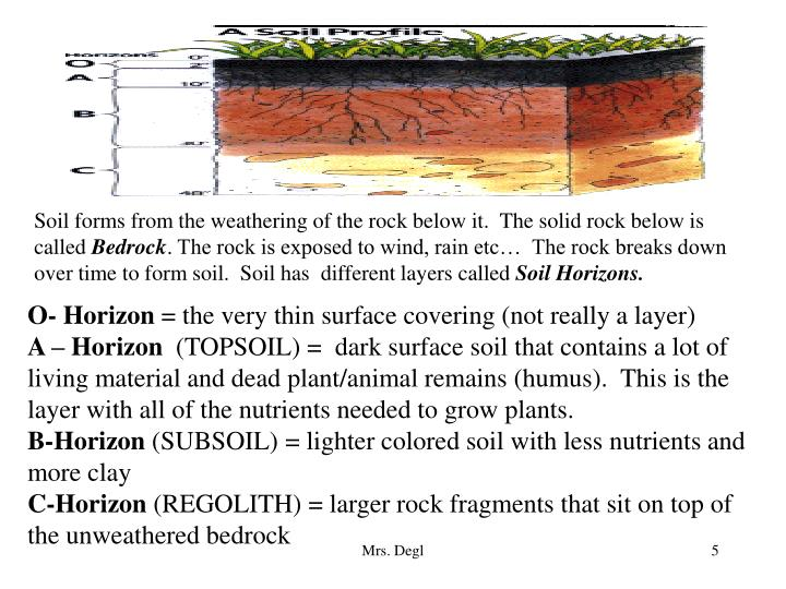 Soil forms from the weathering of the rock below it.  The solid rock below is called