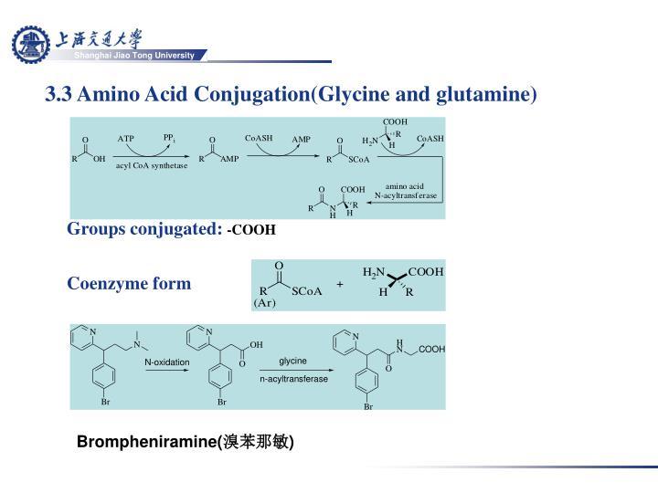 3.3 Amino Acid Conjugation(