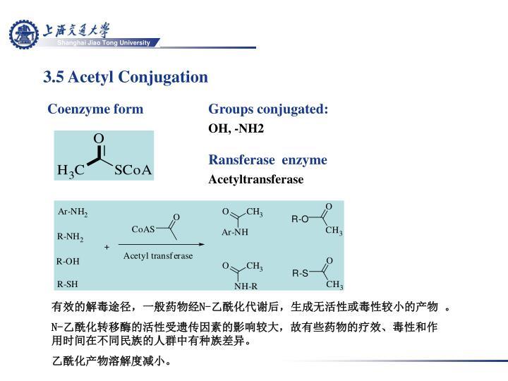 3.5 Acetyl Conjugation