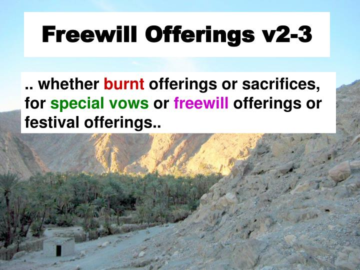 Freewill Offerings v2-3