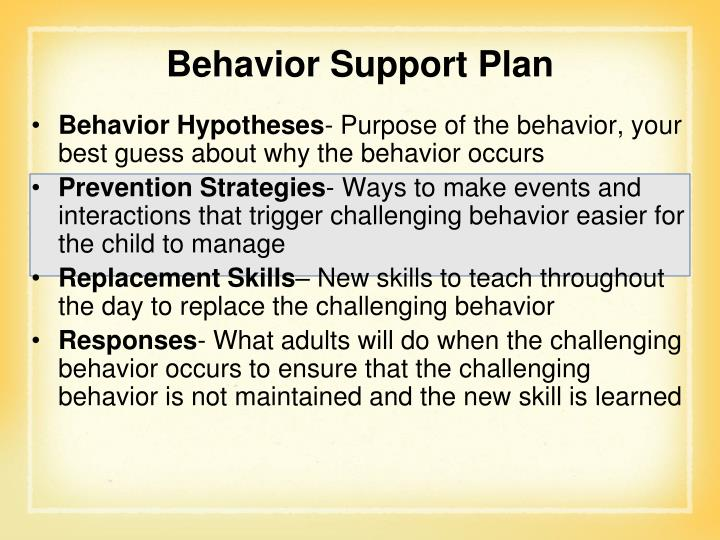 Behavior Support Plan