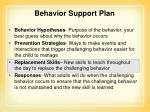 behavior support plan1