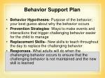 behavior support plan2