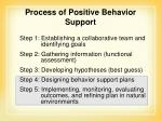 process of positive behavior support1