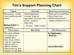tim s support planning chart2