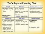 tim s support planning chart3