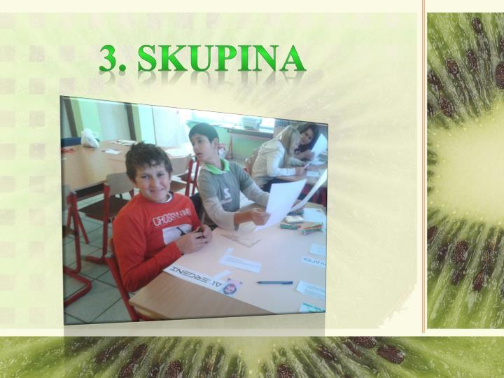 3. SKUPINA