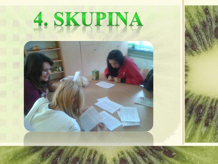 4. SKUPINA
